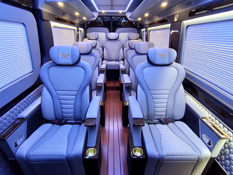 hyundai-solati-limousine-hyundai-tphcm (5)